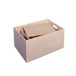 Picture of Sjouwkist-speelgoedopbergkist (vingerveilig) 50 x 35 x 24,5 cm zonder wielen Van Dijk Toys