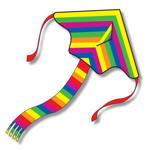 Afbeeldingen van Vlieger Regenboog 1 lijn